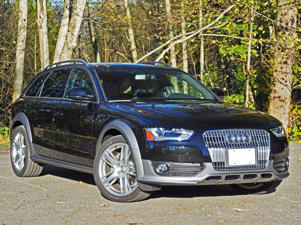 Picture of Leonard's 2015 Audi A4