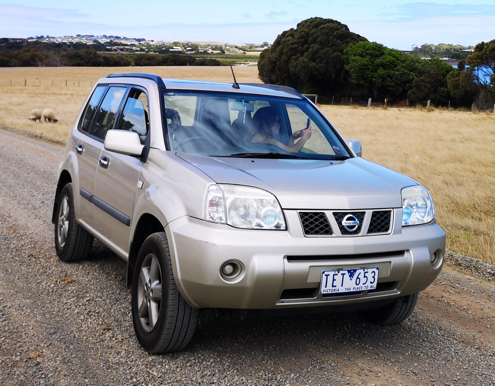 Picture of Stien's 2004 Nissan X-trail