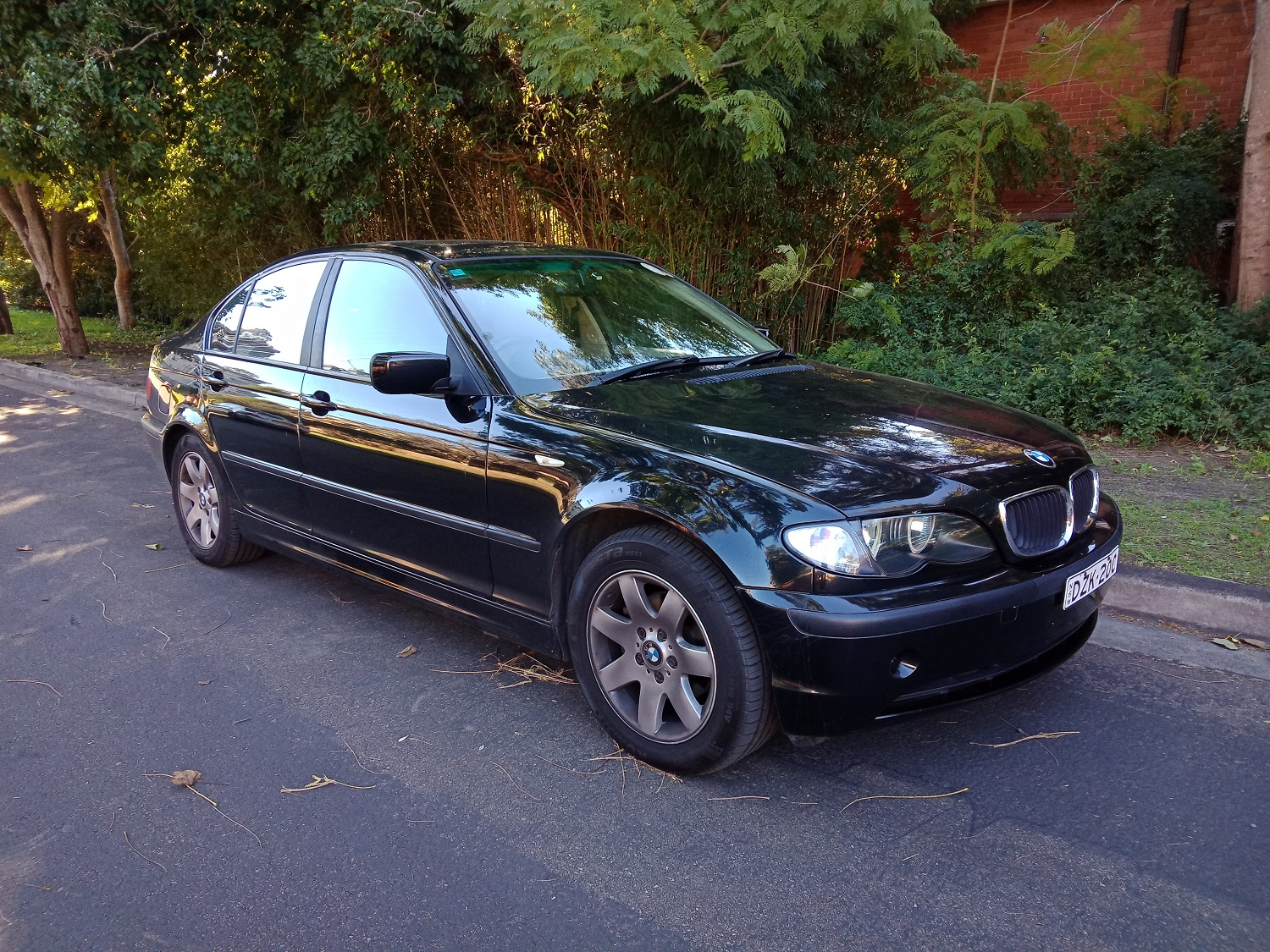 Picture of Mamun Al's 2004 BMW 318i